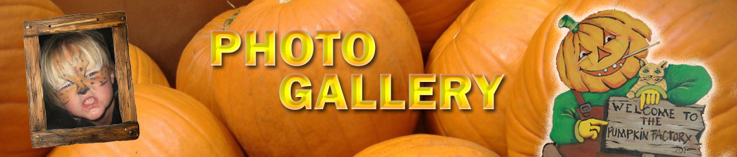 Phot-Galleryl-Header
