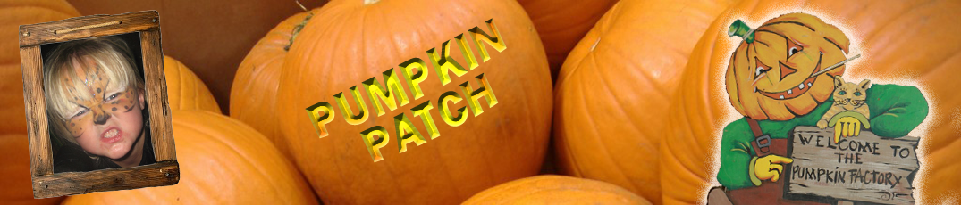 pumpkin-patch-header