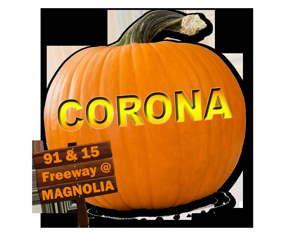 pumpkincoronanew4