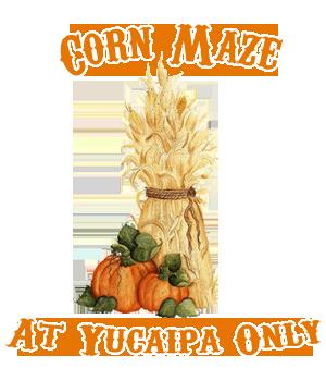 corn-maze-2-home-page