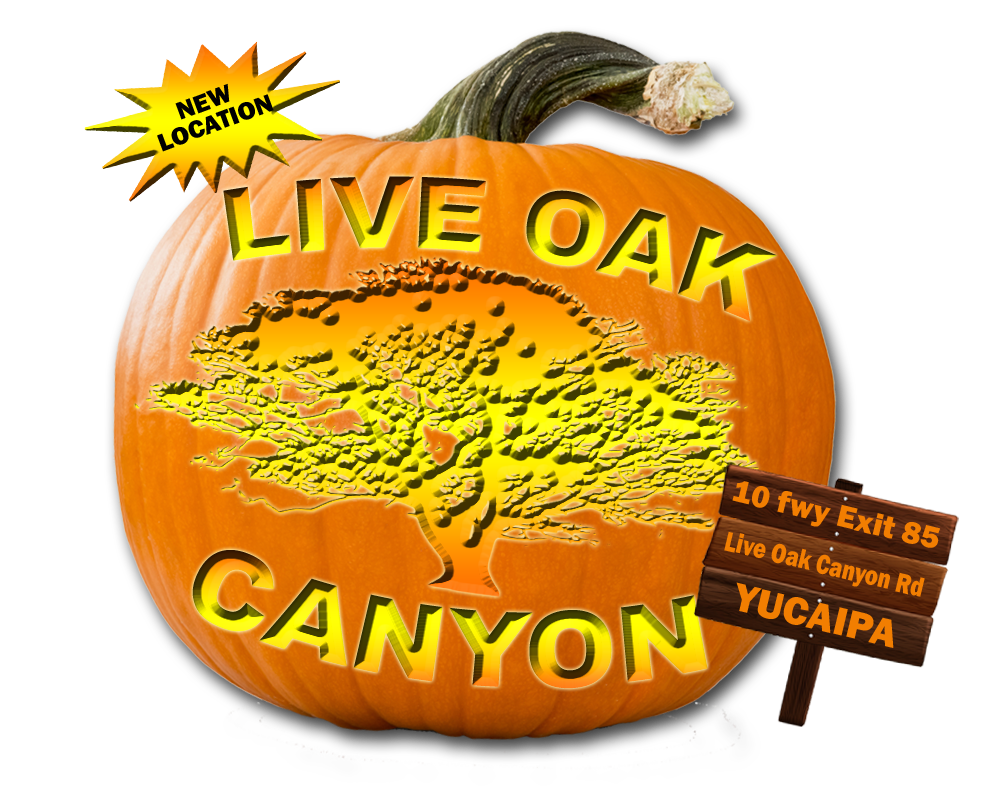 pumpkinliveoak2