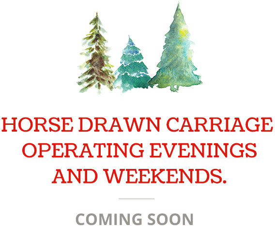 LiveOakChristmasTrees-HorseDrawnCarriage