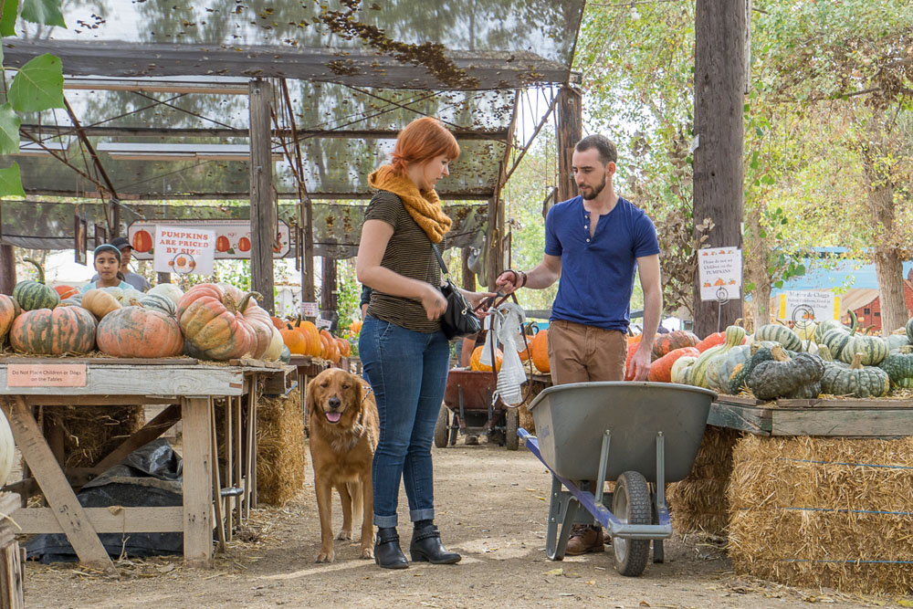 PumpkinPatch-4