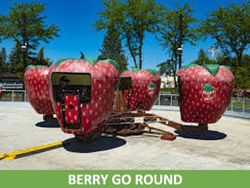 Berry go round500