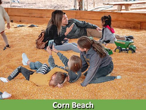 Corn Beach 500