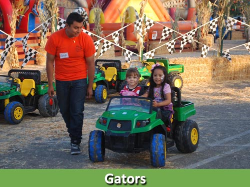 Gators500